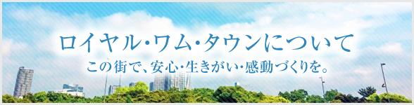 豊川ロイヤル・ワム・タウンについて
